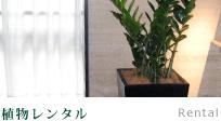 植物レンタル